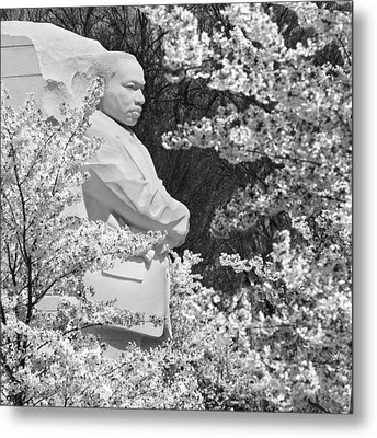 Martin Luther King Memorial Through The Blossoms Metal Print by Mike McGlothlen