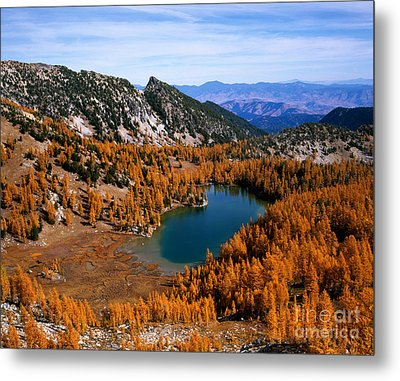 Martin Peak And Cooney Lake Metal Print by Tracy Knauer