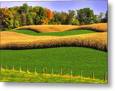 Maryland Country Roads - Swales Metal Print by Michael Mazaika