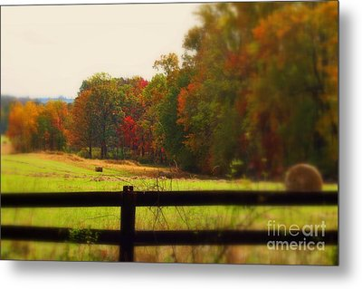 Maryland Countryside Metal Print by Patti Whitten