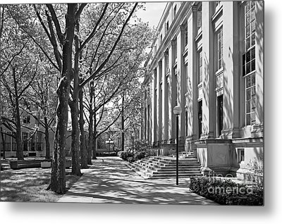 Massachusetts Institute Of Technology Eastman Labs Metal Print by University Icons