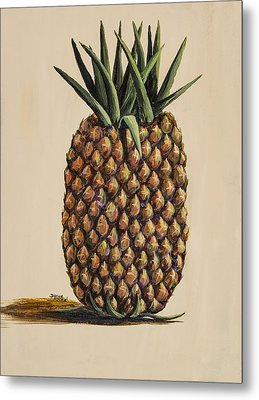 Maui Pineapple 3 Metal Print by Darice Machel McGuire