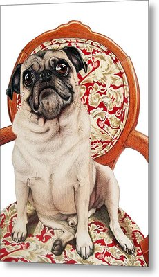 Metal Print featuring the drawing Max by Danielle R T Haney
