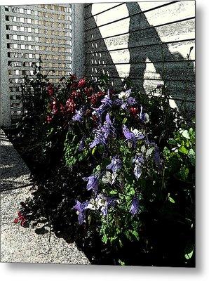 May Flowers Fresco Metal Print