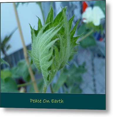 May Peace On Earth Metal Print
