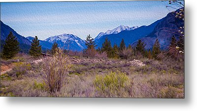Mazama From Wolf Creek Metal Print by Omaste Witkowski