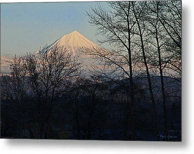 Mclaughlin Late Winter Day Metal Print by Mick Anderson