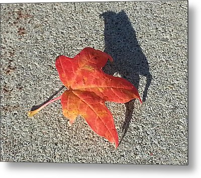 Metal Print featuring the photograph Me And My Shadow by Caryl J Bohn