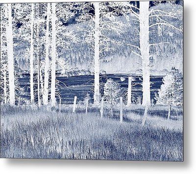 Meadow 9 Metal Print by Larry Campbell
