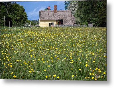 Meadow Cottage Metal Print by Stephen Norris