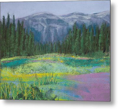Meadow In The Cascades Metal Print