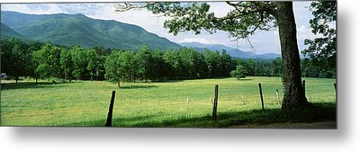 Meadow Surrounded By Barbed Wire Fence Metal Print by Panoramic Images