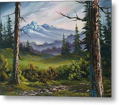 Meadow View Metal Print by C Steele