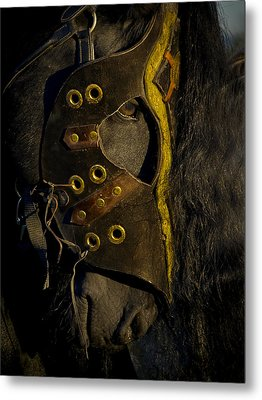 Medieval Stallion Metal Print by Wes and Dotty Weber