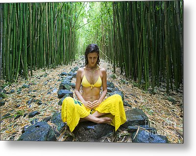 Meditation In Bamboo Forest Metal Print by M Swiet Productions