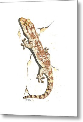 Mediterranean House Gecko Metal Print by Cindy Hitchcock