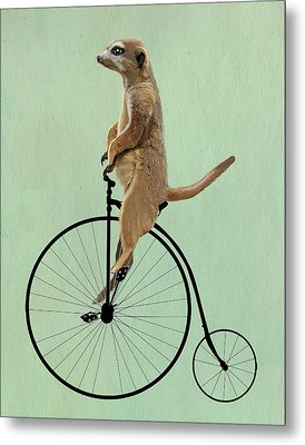Meerkat On A Black Penny Farthing Metal Print by Kelly McLaughlan