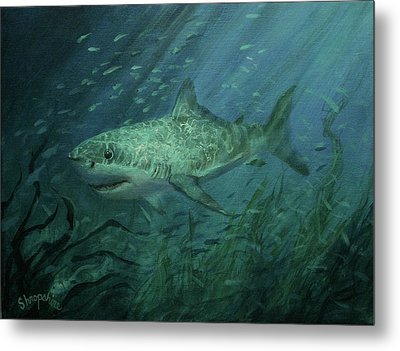 Megadolon Shark Metal Print by Tom Shropshire