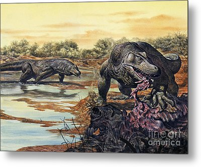 Megalania Giant Monitor Lizard Eating Metal Print by Mark Hallett