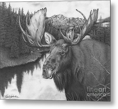 Melozi River Moose Metal Print