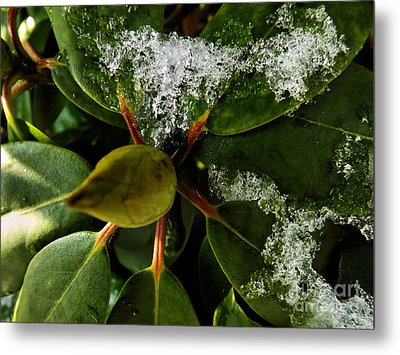Metal Print featuring the photograph Melting Crystals by Robyn King