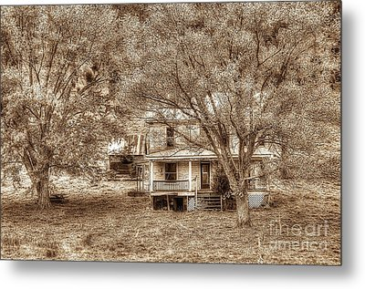 Memories Behind The Trees Metal Print by Dan Friend