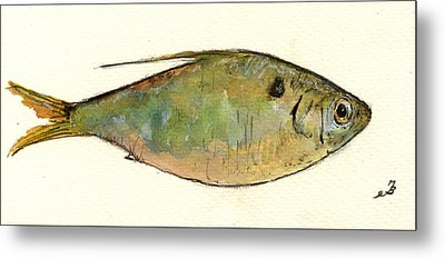 Menhaden Fish Metal Print by Juan  Bosco