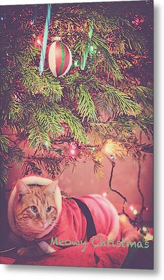 Meowy Christmas Metal Print by Melanie Lankford Photography