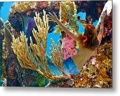 Mermaid And Snorkeler Metal Print by Paula Porterfield-Izzo