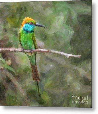 Merops Orientalis Little Green  Bee-eater Metal Print