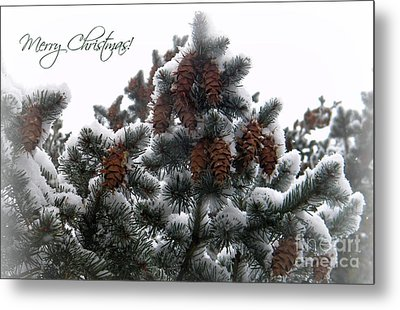 Merry Christmas Pinecones Metal Print by Michelle Frizzell-Thompson