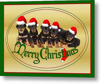Merry Christmas Rottweiler Puppies Greeting Card Metal Print by Tracey Harrington-Simpson