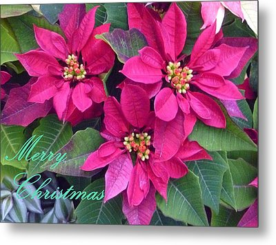 Merry Christmas To You Metal Print