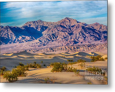 Mesquite Dunes And Mountains Metal Print