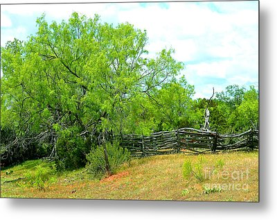 Mesquite Tree And Cedar Post Fence Metal Print by Linda Cox
