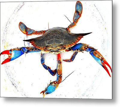 Mess With Me............sold. Metal Print by Antonia Citrino