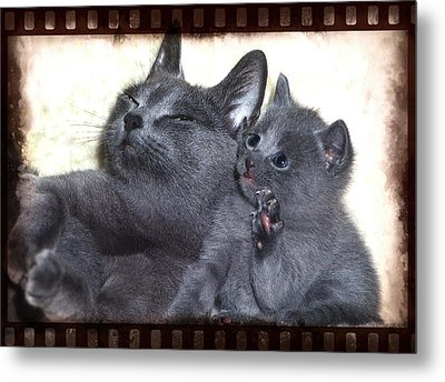 Mess With My Ma I'll Scratch Your Eyes Out Metal Print by Richard Thomas