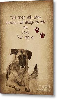 Message From Your Dog Metal Print by Clare Bevan