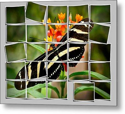 Messed Up Butterfly Metal Print by Jean Noren
