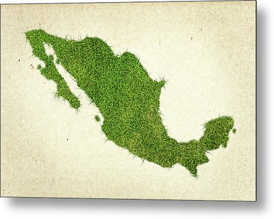Mexico Grass Map Metal Print by Aged Pixel