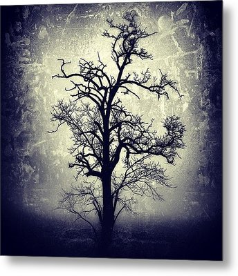 #mgmarts #all_shots #instahub Metal Print by Marianna Mills