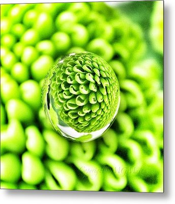 #mgmarts #micro #world #effect Metal Print by Marianna Mills