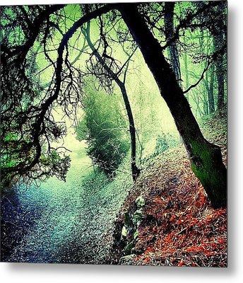 #mgmarts #nature #fog #visionary Metal Print by Marianna Mills