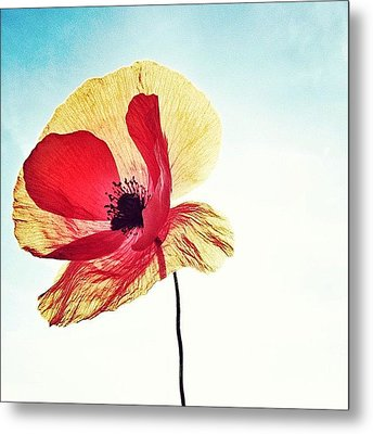 #mgmarts #poppy #nature #red #hungary Metal Print