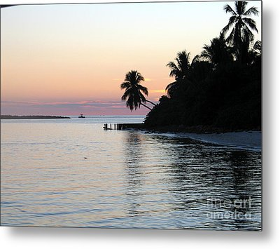 Metal Print featuring the photograph Miami Palms by Shelia Kempf
