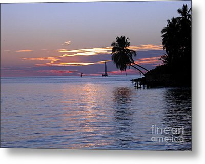 Metal Print featuring the photograph Miami Sunset by Shelia Kempf