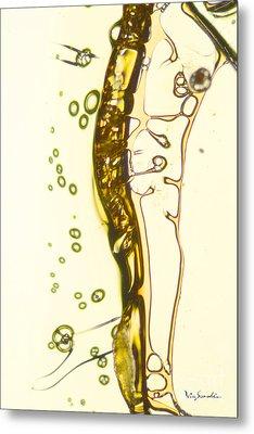 Micro Art Beer 13 Metal Print by Vin Kitayama