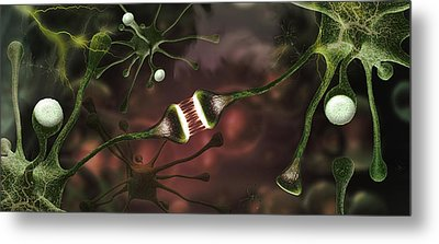 Microscopic Image Of Brain Neurons Metal Print