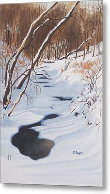 Mid Winter On The Alexauken Metal Print