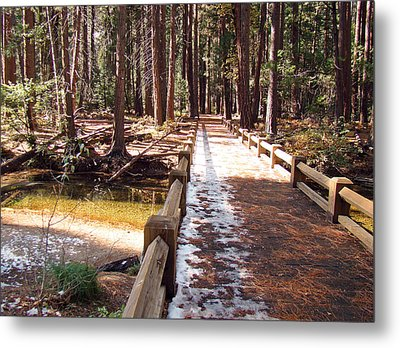 Metal Print featuring the photograph Yosemite Midday Sunlight by Walter Fahmy
